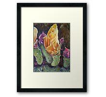 Flor de Cactus Framed Print
