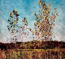 Textural Trees by SRowe Art
