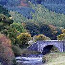 THe Bridge by ElsT