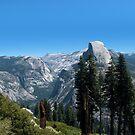 Yosemite by Nikki Collier