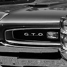 GTO by Larry  Stewart