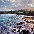 Hana Maui Coast by Philip James Filia