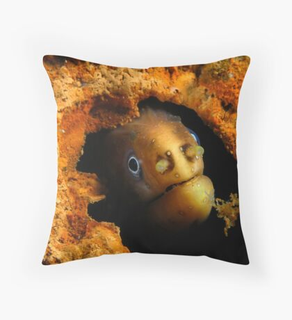 Moody Moray Throw Pillow