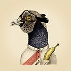 trendy guy pheasant with banana by smalldrawing