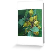 Eucalyptus Mallee Greeting Card