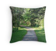 Path To Success Throw Pillow
