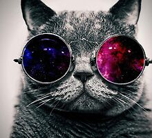 Space Cat With Glasses by dylkami