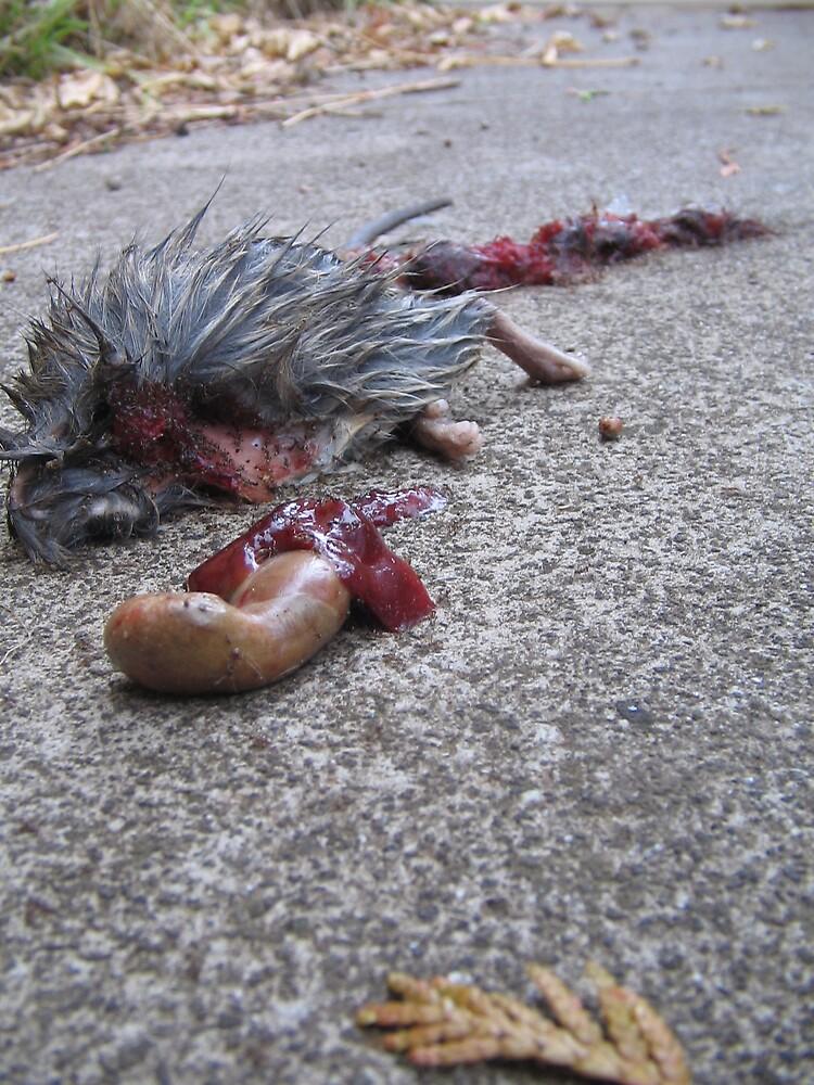Gruesome death by kossimarsalsa