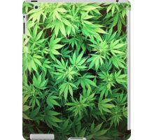 Marijuana iPad Case/Skin