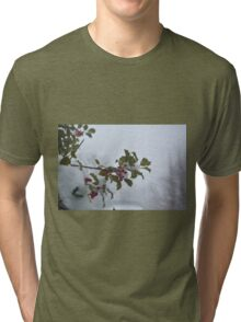 Snow on the holly Tri-blend T-Shirt