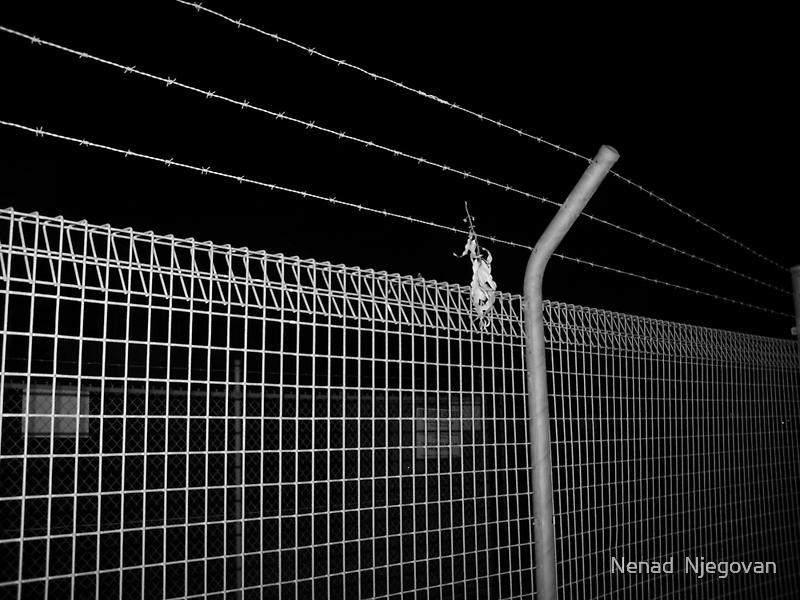 fence for the kids by Nenad  Njegovan