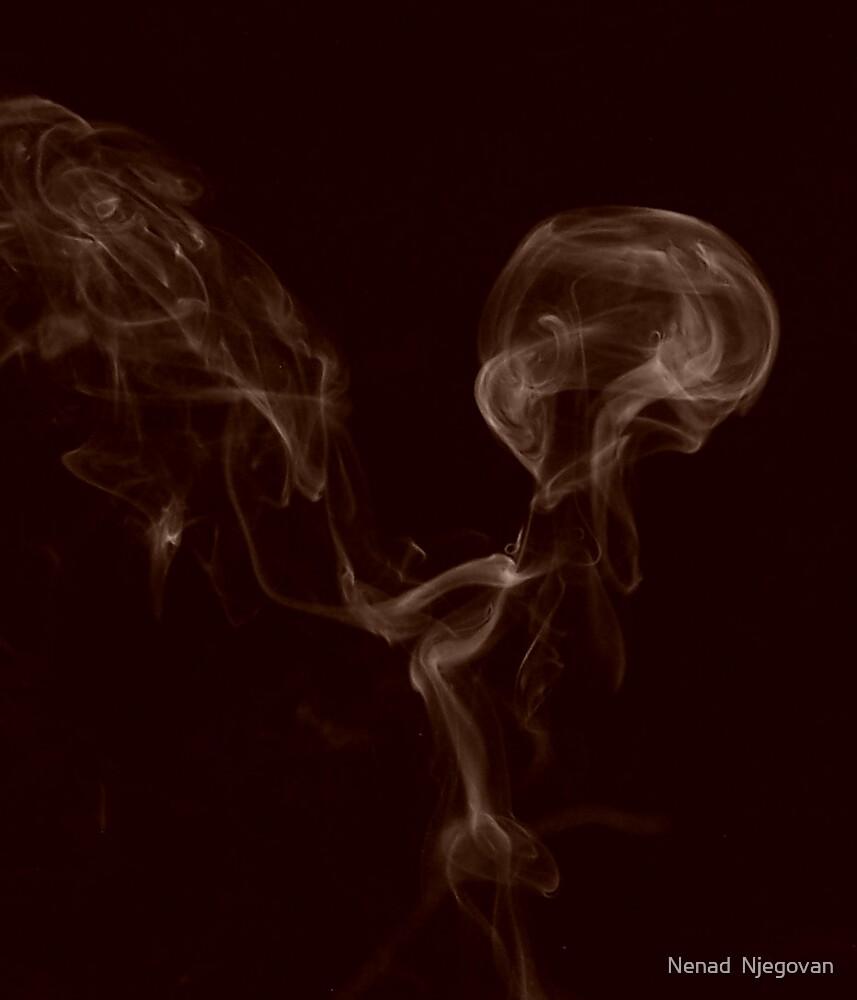 Smoke by Nenad  Njegovan