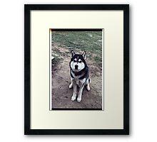 00355 Framed Print