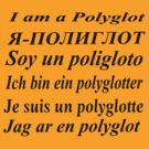I am a polyglot by Terry Mooney