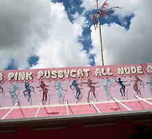 Club Pink Pussycat All Nude Revue by meadaura
