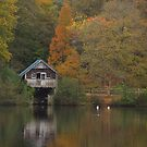 The boathouse  by miradorpictures
