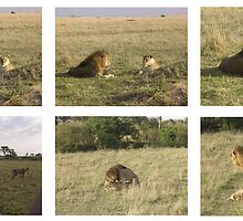 Story of sex and love in the Mara by Grazia Gargiulo