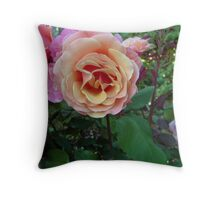 Different color roses Throw Pillow