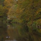 The boathouse in autumn by miradorpictures