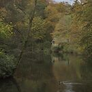 The boathouse at Winkworth arboretum by miradorpictures