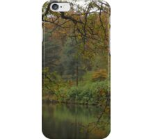 The serenity of autumn iPhone Case/Skin