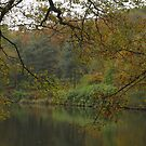 The serenity of autumn by miradorpictures