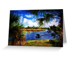 South Florida Winter's Scene Greeting Card