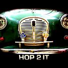Hop 2 It .. by SNAPPYDAVE