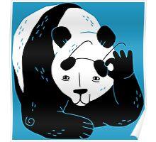 Panda Glasses Poster