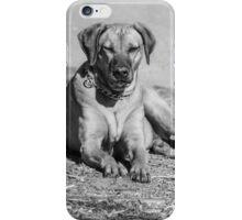 Lucky Dog! iPhone Case/Skin