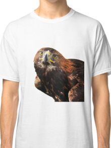 Golden eagle looking at camera  Classic T-Shirt