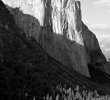 El Capitan Profile by Benjamin Padgett