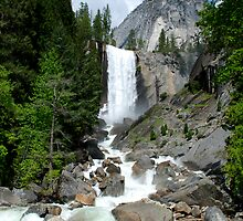 Vernal Fall Vista by Benjamin Padgett