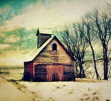 Little Sioux Corn Crib by BarnArtandMore