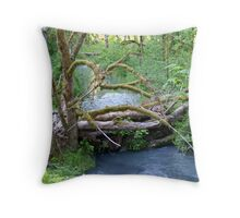 """A Serene Setting"" Throw Pillow"