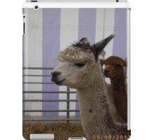 But first, llamas take this selfie iPad Case/Skin