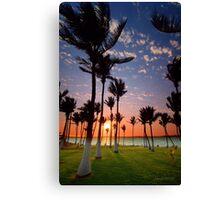 Dancing Dampier Palms Canvas Print