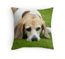 """""""You woke me for what, in particular ?????"""" Throw Pillow"""