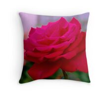 Almost perfection Throw Pillow