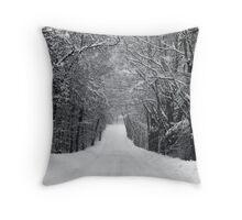 Dumprun Snowstorm Throw Pillow