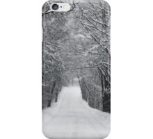 Dumprun Snowstorm iPhone Case/Skin