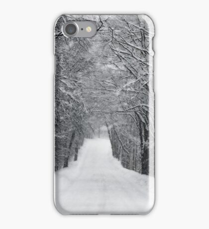 Dumprun Snowstorm iPhone Case/Skin