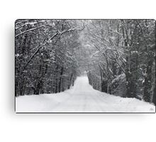 Dumprun Snowstorm Metal Print