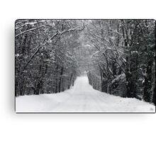 Dumprun Snowstorm Canvas Print