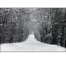 Dumprun Snowstorm Photographic Print