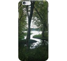 River Forest iPhone Case/Skin