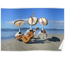 Pelican Mariachi band Poster