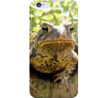 Toad peeking off the side of a garden wine barrel iPhone Case/Skin