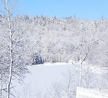 White Snow And Blue Skies by Martha Medford