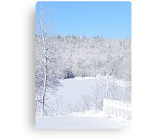 White Snow And Blue Skies Canvas Print